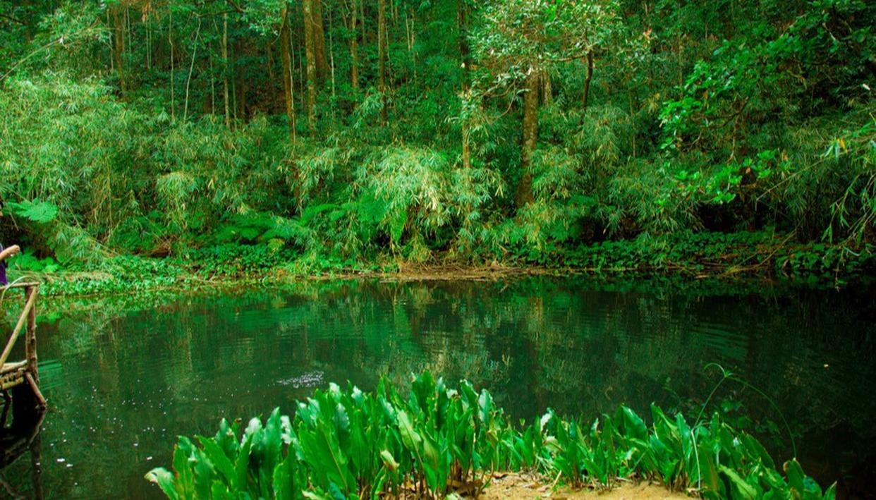The Secret Tiny Little Lake Near Bangalore You Didn't Know About