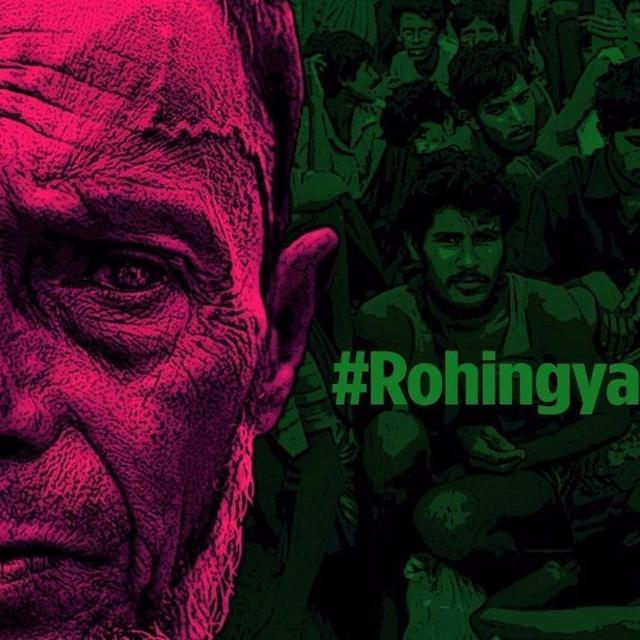 EXCLUSIVE: Govt.'s hard reply to Rohingya apologists