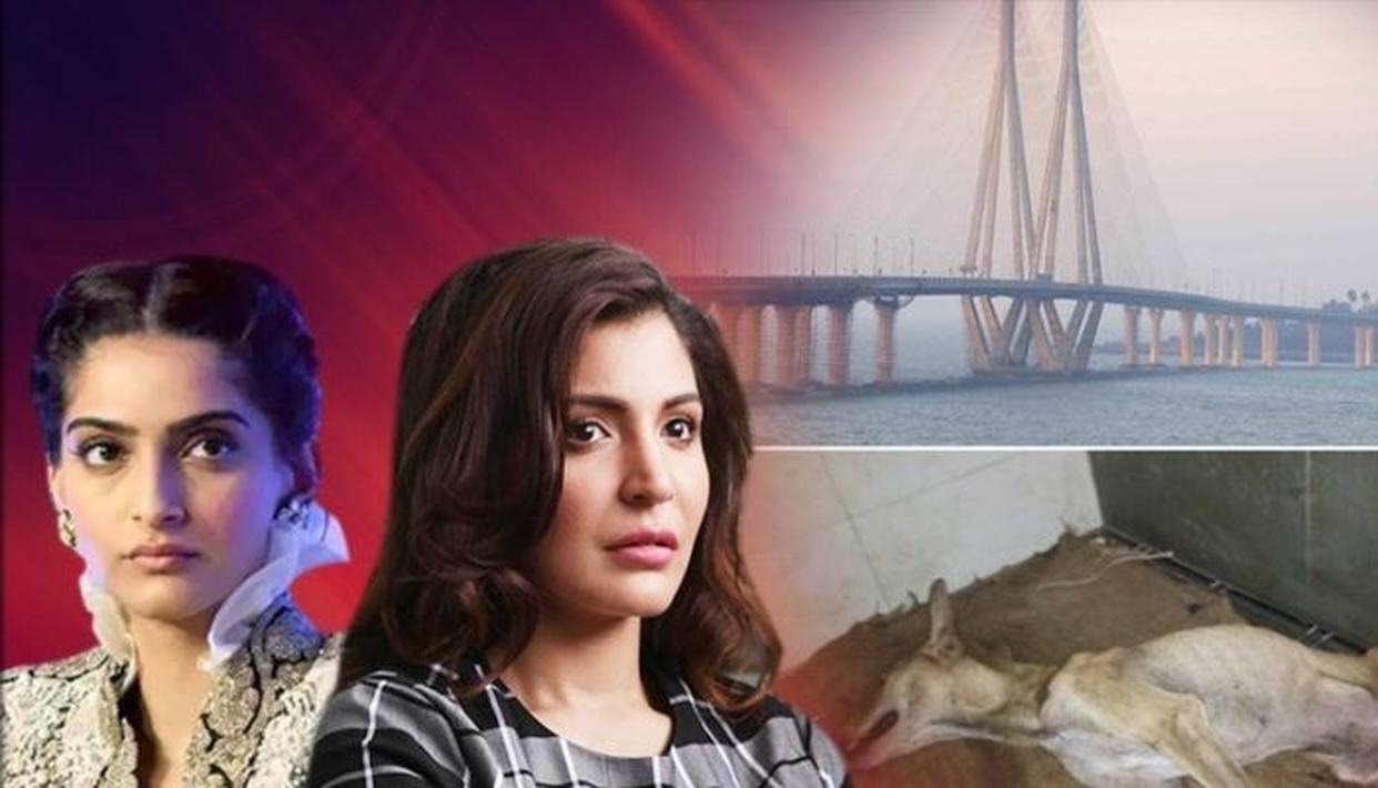 Sonam Kapoor, Anushka Sharma have reported cruelty towards a stray dog in Mumbai who tried to take shelter in a building during the heavy rains, however, was brutually beaten. And as per Mumbai police, the perpetrators have now been arrested