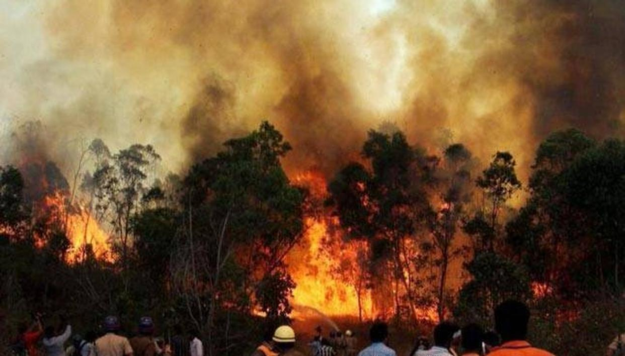 TN FOREST FIRE TEMPORARILY BANS TREKKING IN KER