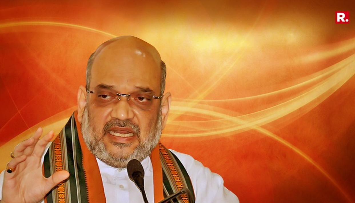 AMIT SHAH CLARIFIES HIS 'CAT, DOG, SNAKE, MONGOOSE' ATTACK ON THE OPPOSITION