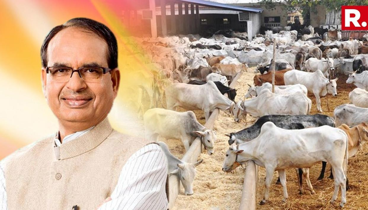 SWAMI AKHILESHWARANAND LAUDS SHIVRAJ SINGH CHOUHAN FOR ANNOUNCING COW MINISTRY