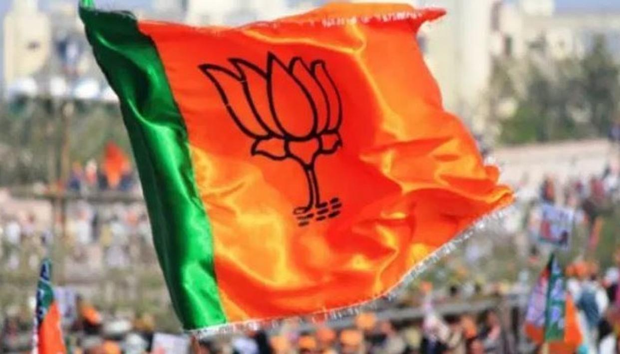 महिला मतदाताओं को जोड़ने के लिए BJP ने अपनाईये 'रणनीति'