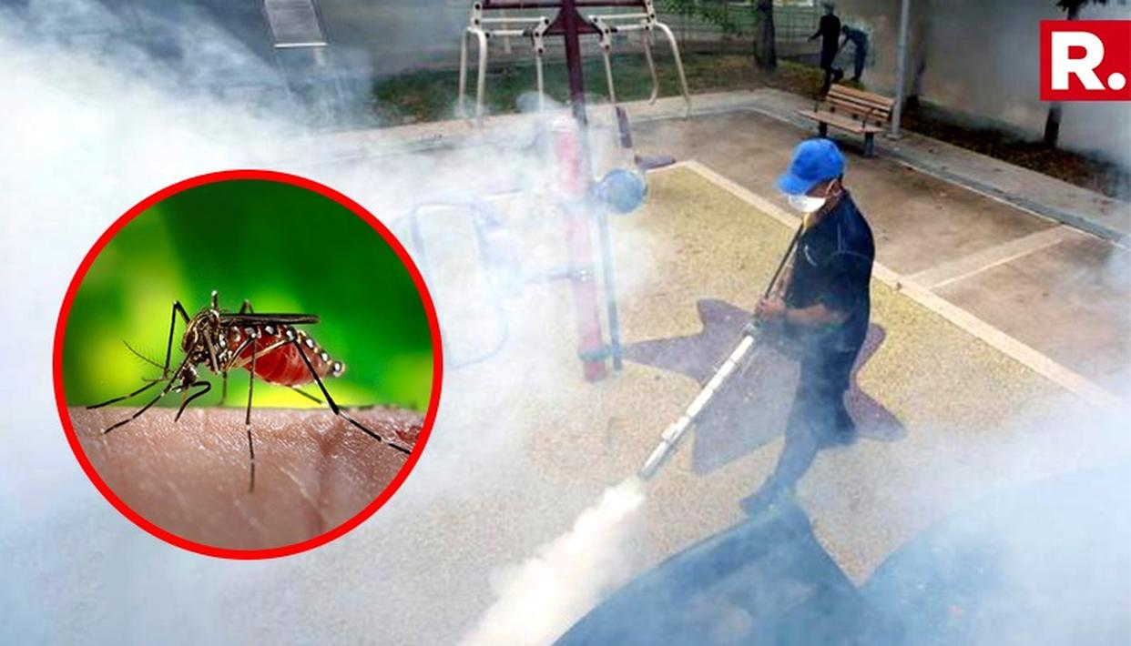 RAJASTHAN GOVT ON TOES TO GET RID OF ZIKA VIRUS