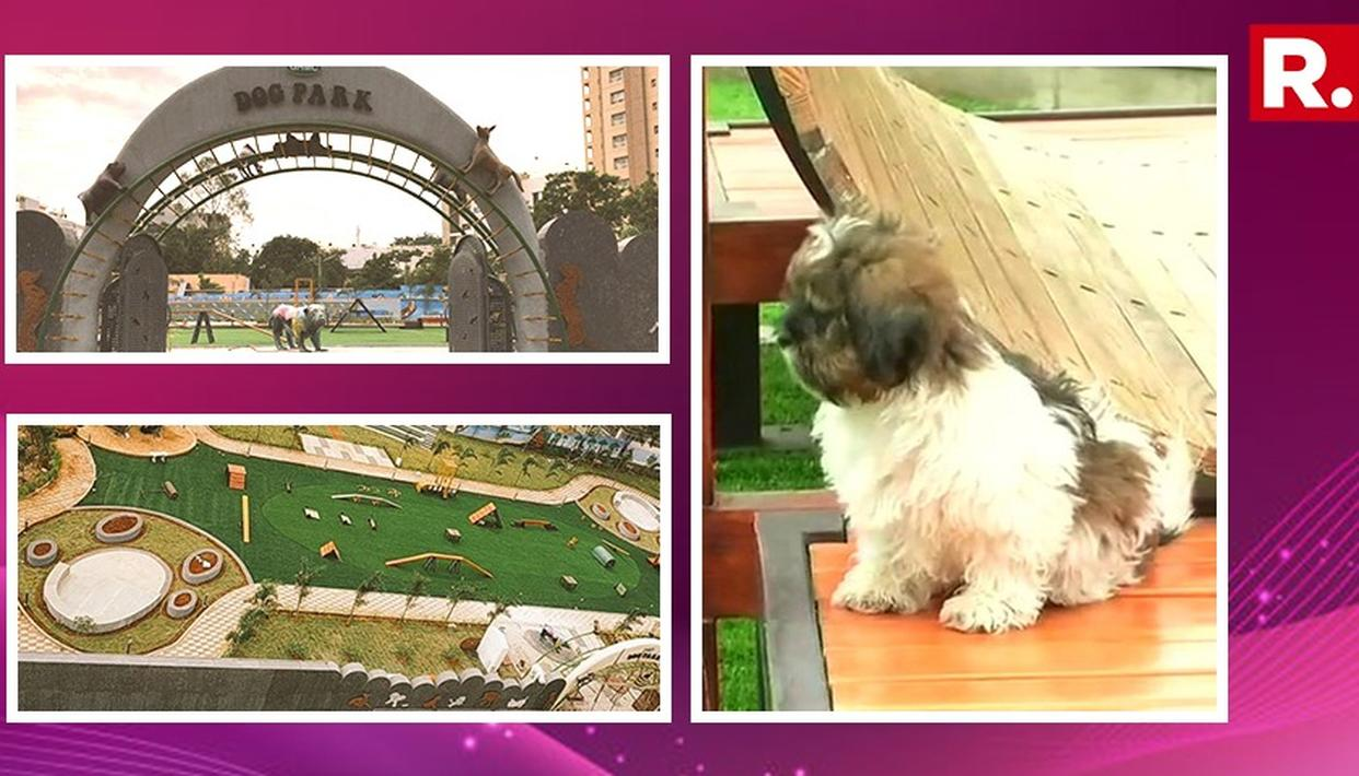 INDIA'S FIRST DOG PARK OPENS