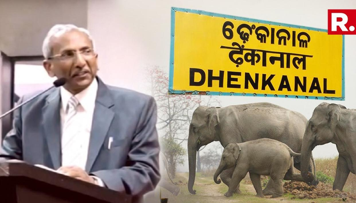 NGT Forms Team To Probe Death Of Seven Elephants In Odisha