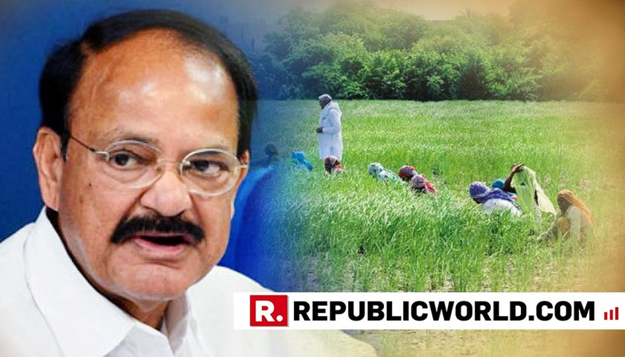 AGRICULTURE SECTOR NEEDS LONG-TERM SOLUTIONS, LOAN WAIVER TEMPORARY: NAIDU