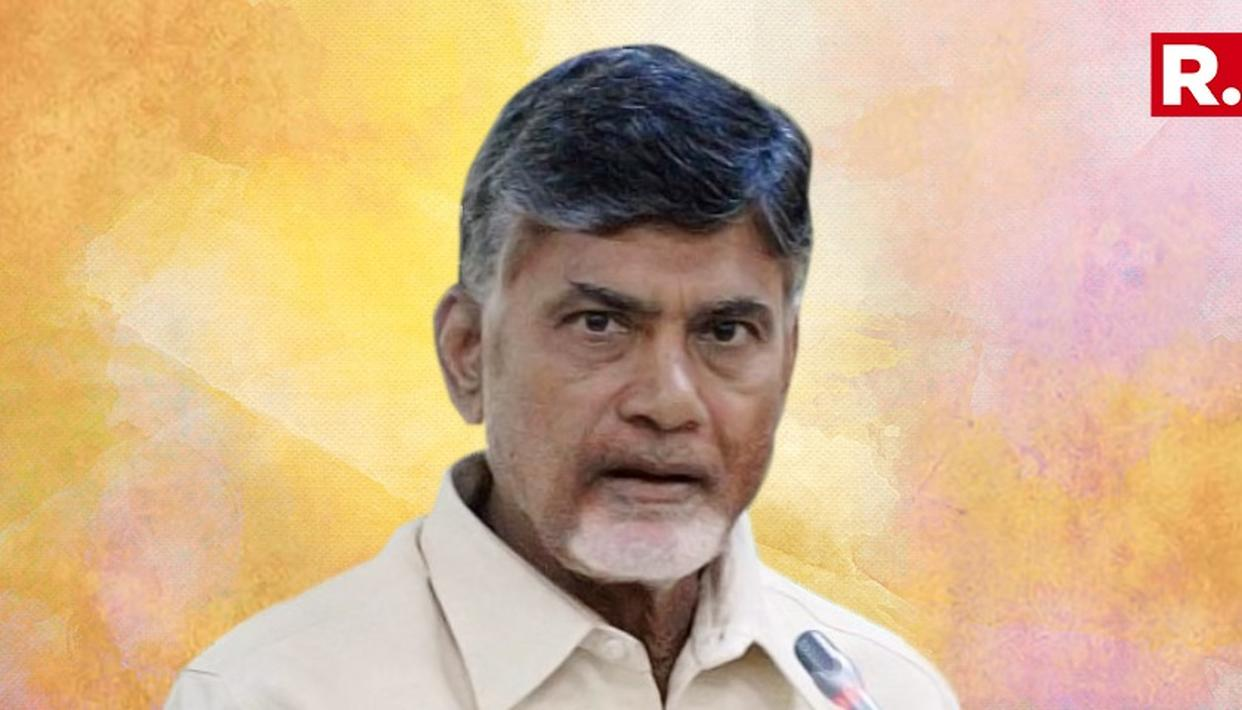 NAIDU'S GRANDSON 6 TIMES WEALTHIER THAN HE IS
