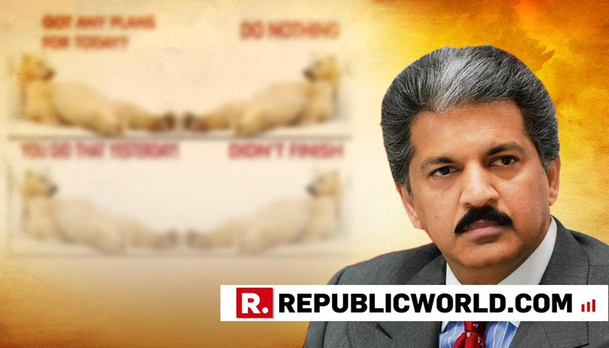 BUSINESS TYCOON ANAND MAHINDRA SHOWS HOW HIS SUNDAY LOOKS LIKE