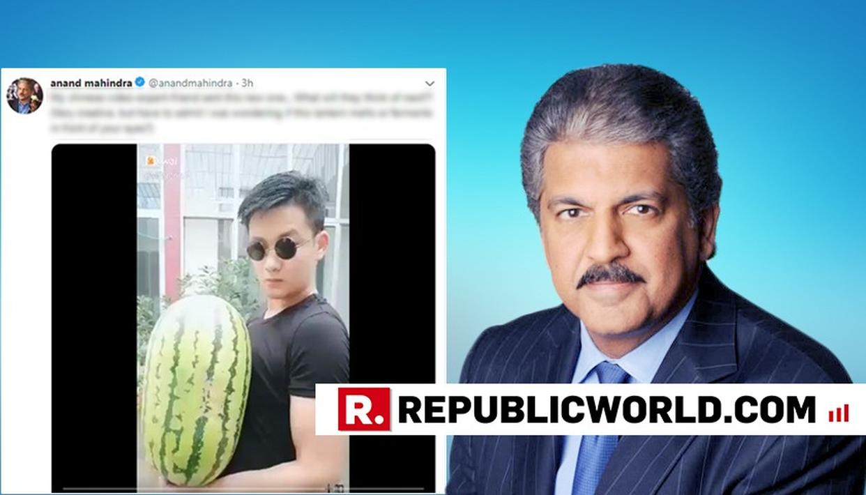 'MELTS OR FERMENTS?', ANAND MAHINDRA'S 'CHINESE-VIDEO-EXPERT-FRIEND' LEAVES HIM WONDERING