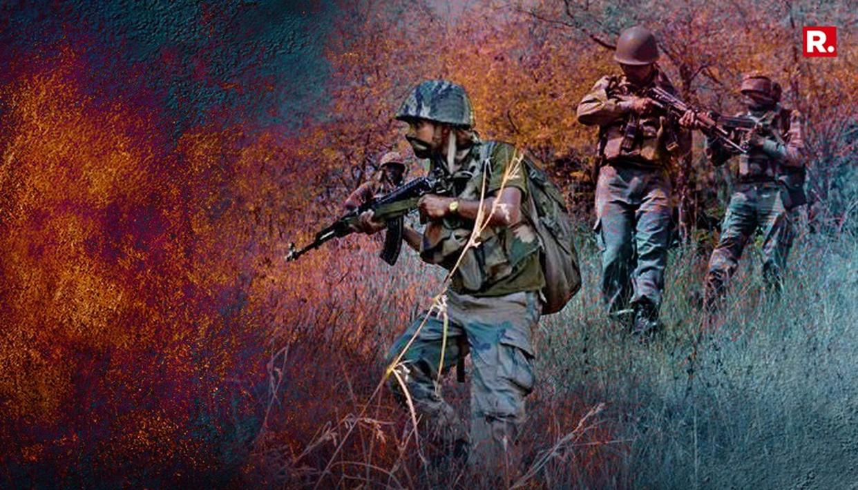More than 225 terrorists killed in J&K so far this year: Army