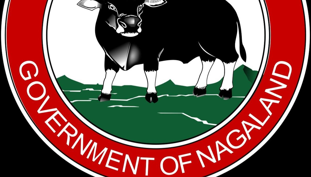 """Nagaland State Lottery Result for Today 28th Jan 