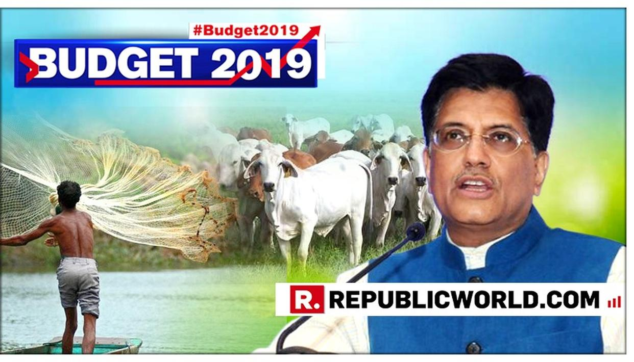 FOR ANIMAL HUSBANDRY AND FISHERIES SECTOR, PIYUSH GOYAL ANNOUNCES SETTING UP OF 'RASHTRIYA KAMDHENU AAYOG' AND 2 % INTEREST RATE RELAXATION IN BUDGET 2019