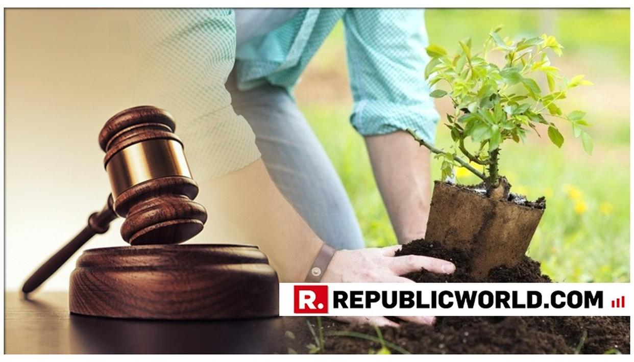 DELHI HC ORDERS 2G ACCUSED TO PLANT 3,000 TREES FOR FAILURE TO FILE REPLIES IN ED APPEAL