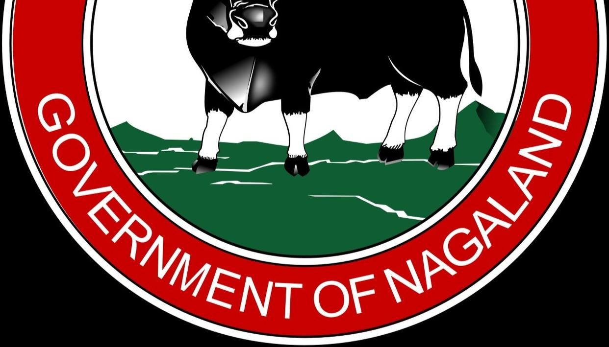 """Nagaland State Lottery Result for Today 14th Feb 