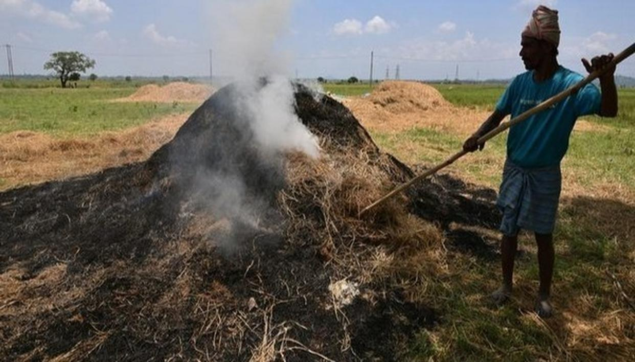 HERE'S HOW MUCH POLLUTION FROM STUBBLE BURNING IS COSTING INDIA EVERY YEAR