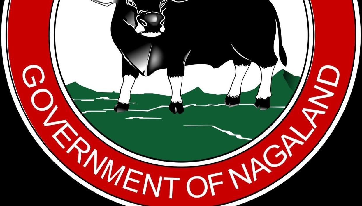 """NAGALAND STATE LOTTERY RESULT TODAY 21 MAR 