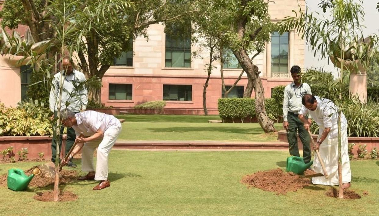 WORLD ENVIRONMENT DAY 2019: EAM S JAISHANKAR PLANTS SAPLINGS, WORLD LEADERS AND PERSONALITIES SEND IN THEIR APPEALS