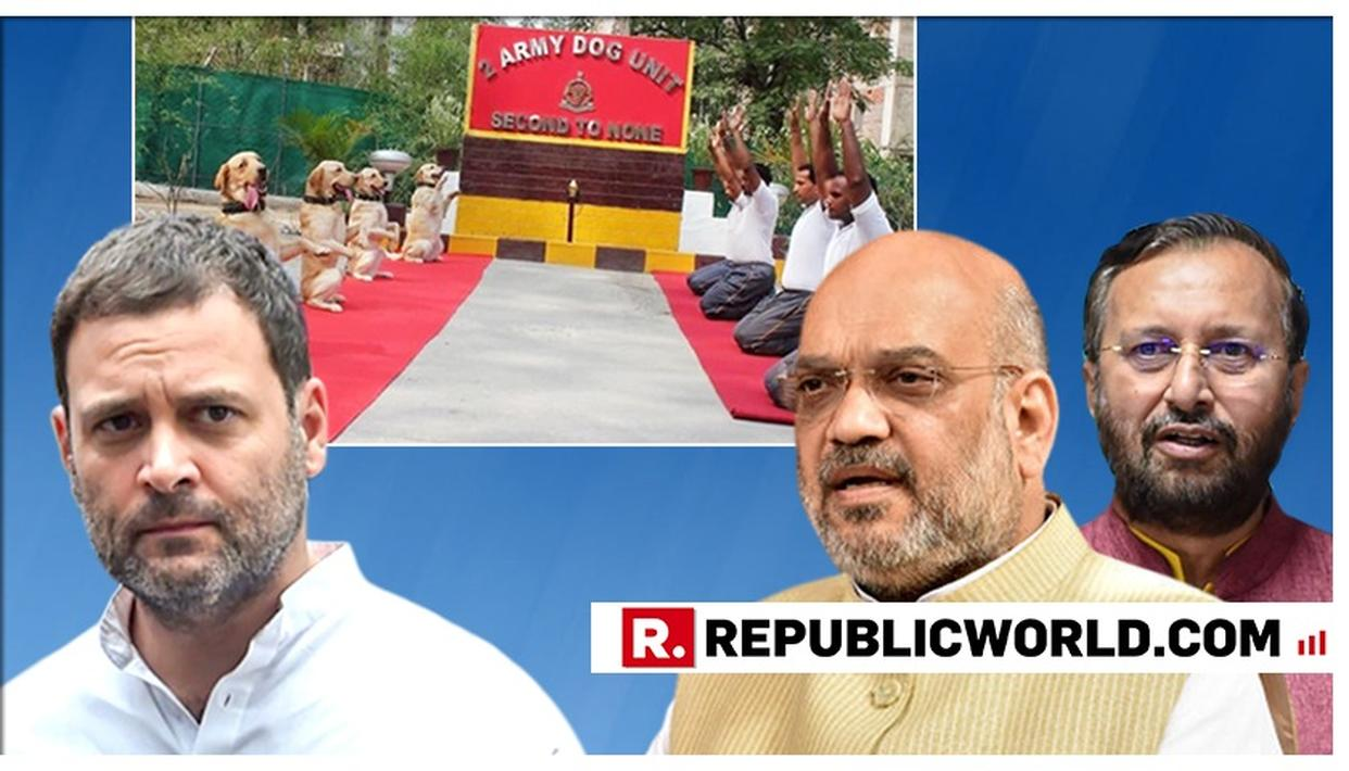 """""""CONGRESS STANDS FOR NEGATIVITY"""": UNION HOME MINISTER AMIT SHAH SLAMS CONGRESS"""
