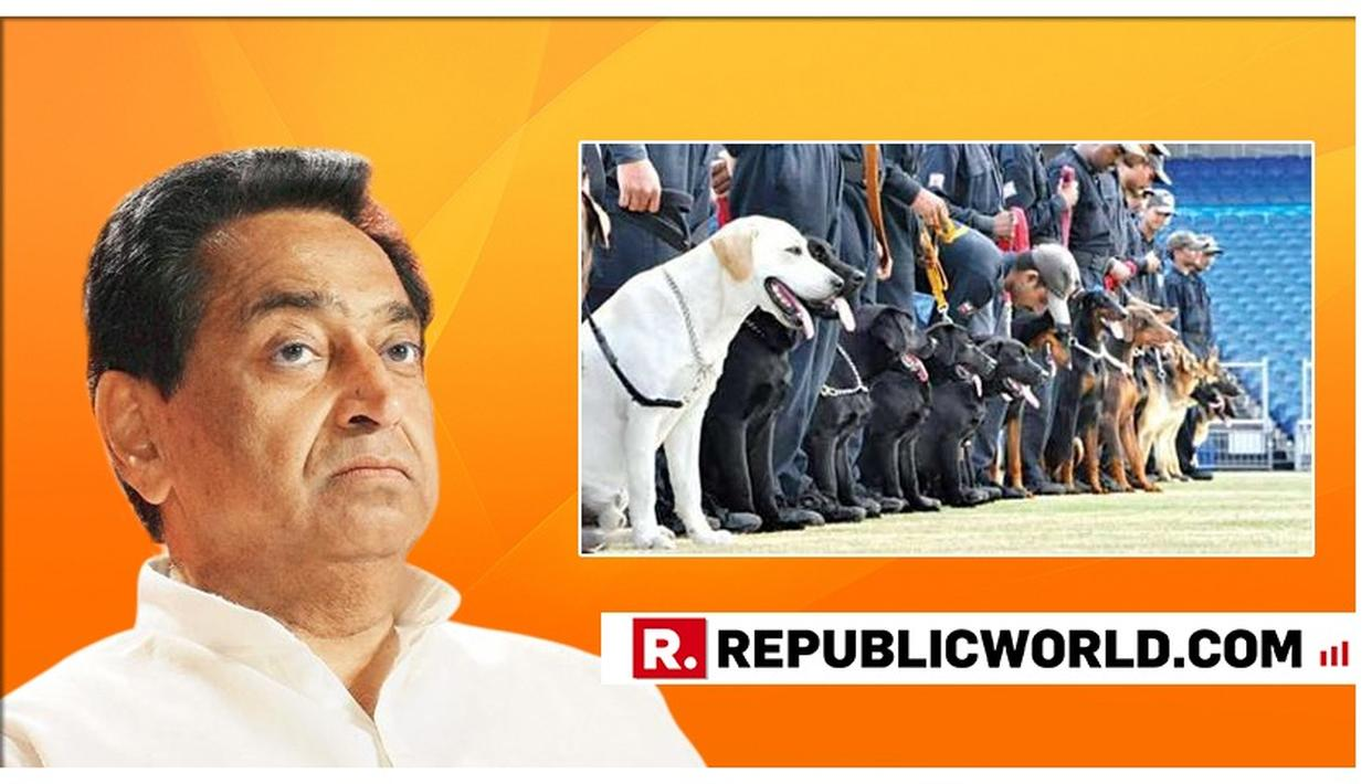 Kamal Nath govt would even transfer land & sky: BJP on transfer of police dogs