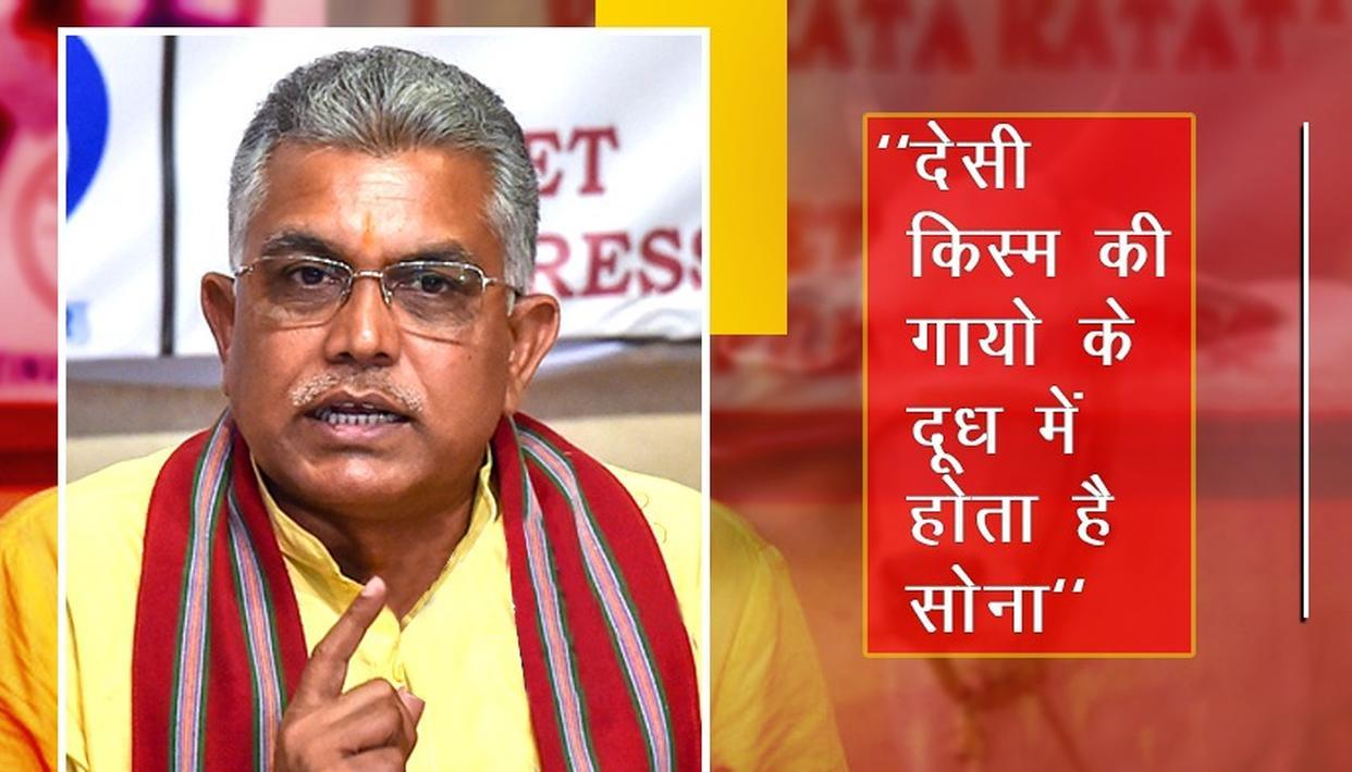 """BJP नेता दिलीप घोष बोले, """"देसी किस्म की गायों के दूध में होता है सोना, विदेशी नस्ल की गायें नहीं गौमाता"""""""