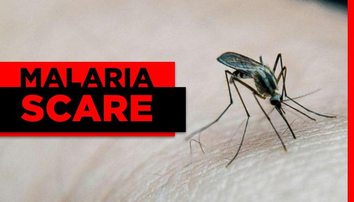 MALARIA SCARE IN 11 UP DISTRICTS