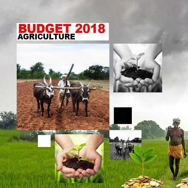 BIG SOPS ANNOUNCED FOR FARM SECTOR