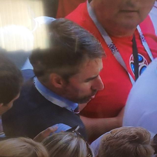 WORLD CUP: SOUTHGATE LOOKALIKE SPOTTED IN CROWD AGAINST SWEDEN