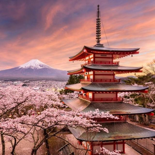 9 CRAZY THINGS ABOUT JAPAN YOU PROBABLY DID NOT KNOW!