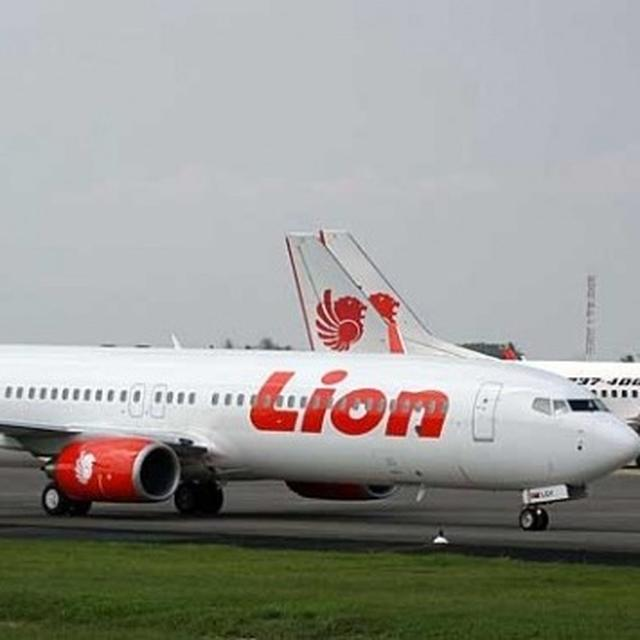 INDONESIAN FLIGHT CRASHES INTO SEA