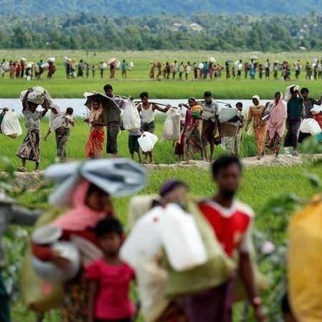 31 ROHINGYA IN LIMBO ON BANGLADESH-INDIA BORDER