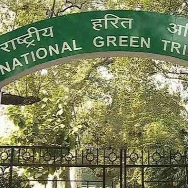 NATIONAL GREEN TRIBUNAL ASKS POLL PANEL, GOVT TO CONSIDER BANNING CAMPAIGN MATERIAL MADE OF PLASTIC