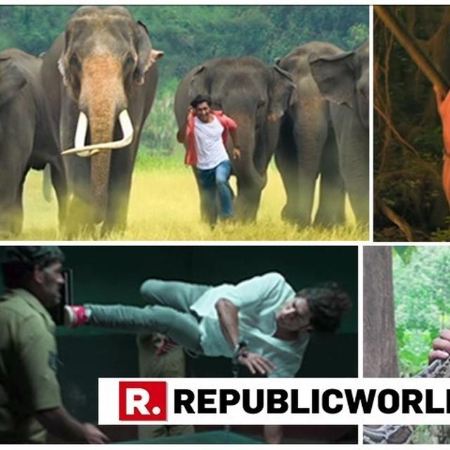 JUNGLEE TRAILER   TWITTERATI CALLS VIDYUT JAMMWAL'S TALE OF FRIENDSHIP AND ADVENTURE 'SUPER AWESOME', LAUD 'HOLLYWOOD LEVEL ACTION'