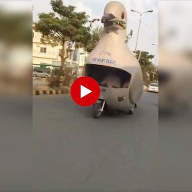 JUST WATCH: NAYA PAKISTAN'S 'PIGEON RATH' FOR PEACE GOING VIRAL NEEDS LITTLE EXPLANATION