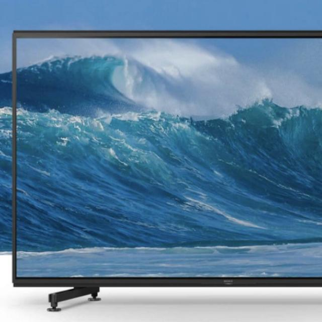 THIS SONY TV WILL COST HALF A CRORE RUPEES IN INDIA