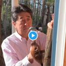 THIS VIRAL VIDEO OF JAPANESE PM SHINZO ABE HANGING A BEAVER DOOR-KNOCKER HAS NETIZENS WANTING MORE
