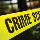 INDIAN-AMERICAN IT PROFESSIONAL KILLED FAMILY BEFORE COMMITTING SUICIDE: POLICE