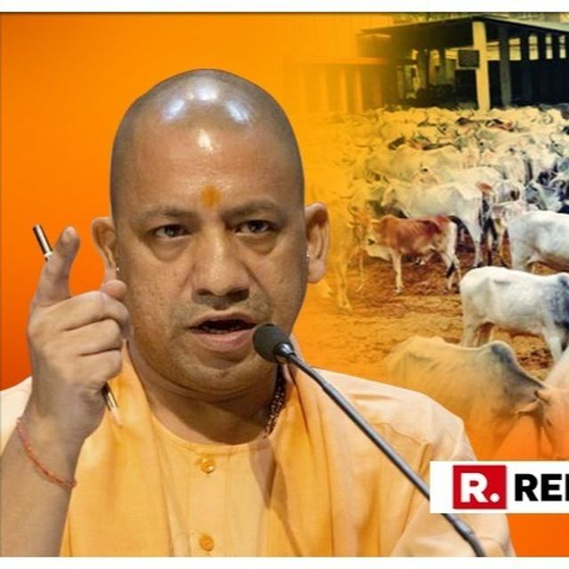 8 OFFICIALS SUSPENDED IN UP OVER REPORTS OF CATTLE DEATHS