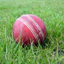 ENGLISH CRICKET CLUB INTRODUCES VEGAN BALL, REPLACES THE TRADITIONAL LEATHER ONE TO SET PRECEDENT
